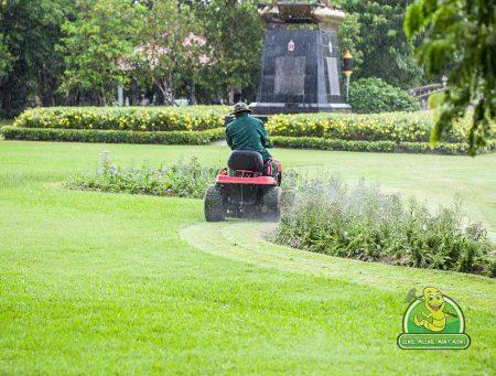 Victoria Lawn Mowing