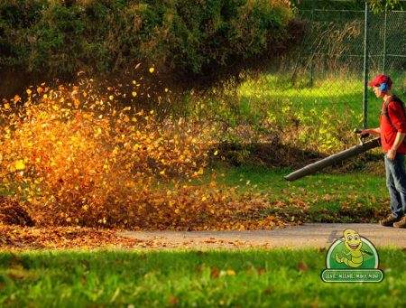 Leave Leaf Blowing to the Professionals
