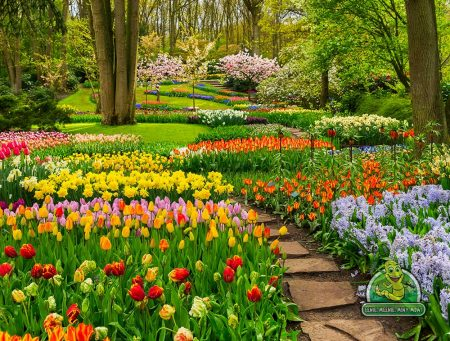 Prince Albert Landscaping