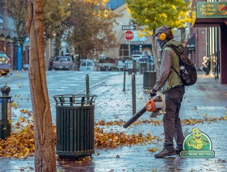 Saskatoon Leaf Blowing