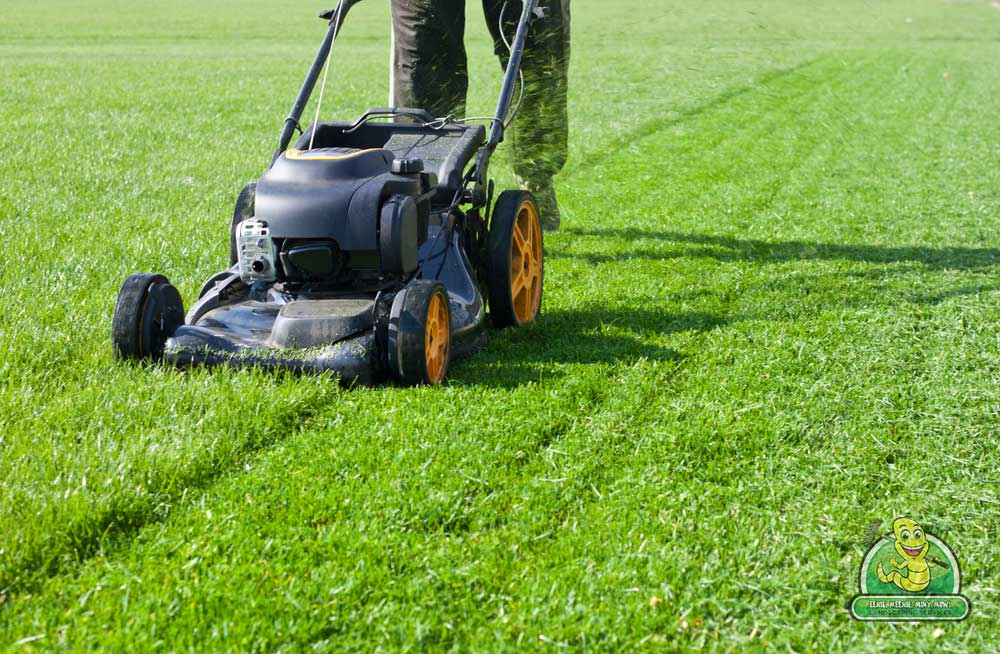 It's Never Too Late For Mowing