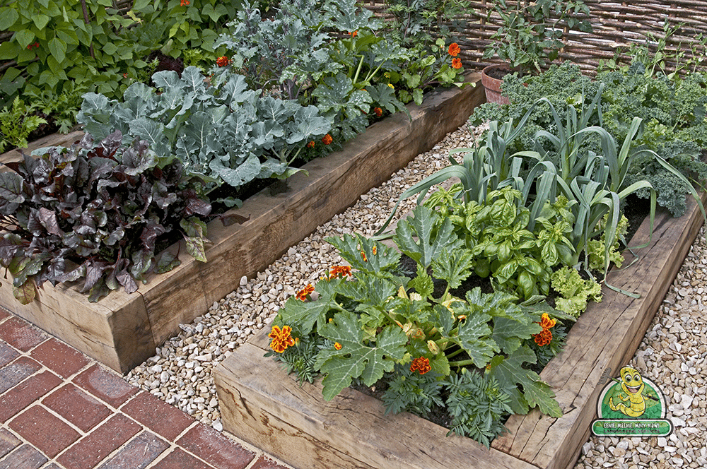 Get The Most Out of Growing Season