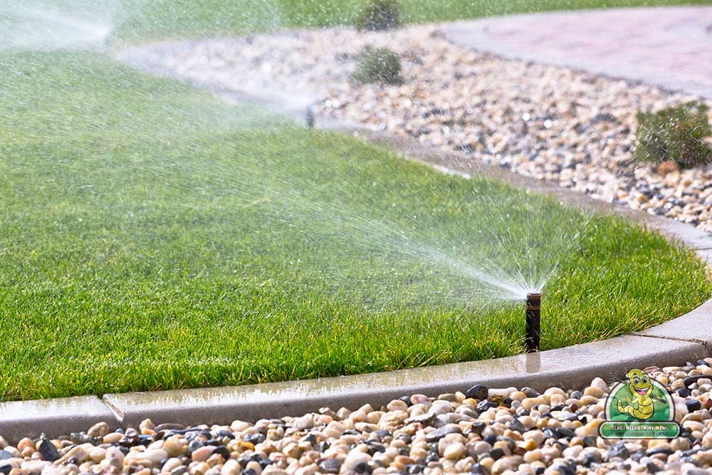 Implementing Irrigation