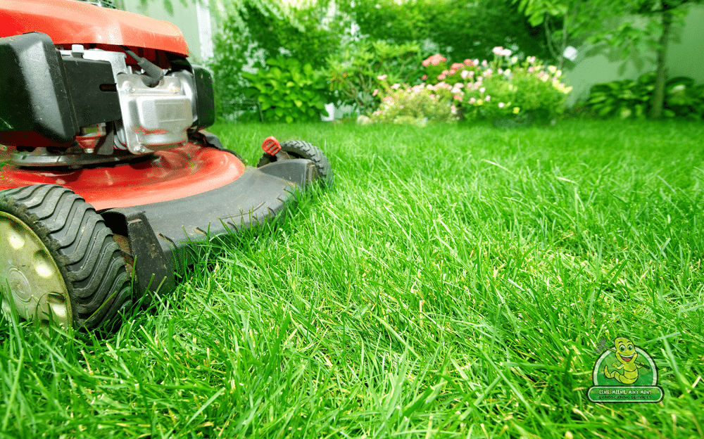 Making Your Yard Work with Nature